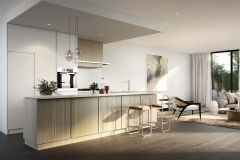 Olea-Homes-Kitchen